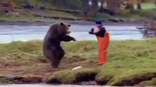 Funny video of a man fighting with a bear