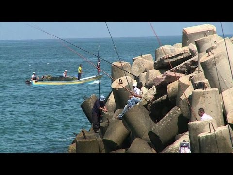 Gaza fishermen back at sea as long-term truce holds on