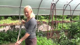 weeding a garden weed control rimol greenhouse systems - Rimol Greenhouse Of Photos