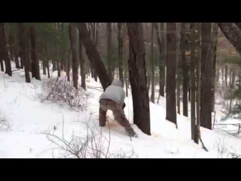 Chainsaw Fail! Remember Not To Stand Under The Tree You Are Cutting Down! video