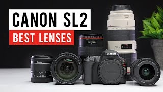 Canon SL2 (200d) Best Lenses