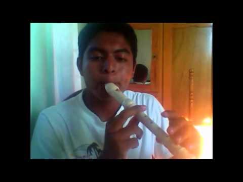 Cancion del Guardaespaldas en flauta dulce (Whitney Houston - I Will Always Love You)