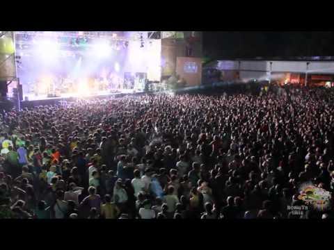 MANU CHAO live @PARCO GONDAR - Gallipoli HD