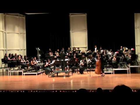 Selection from the Lion King - Zimmer, arr. Lavender