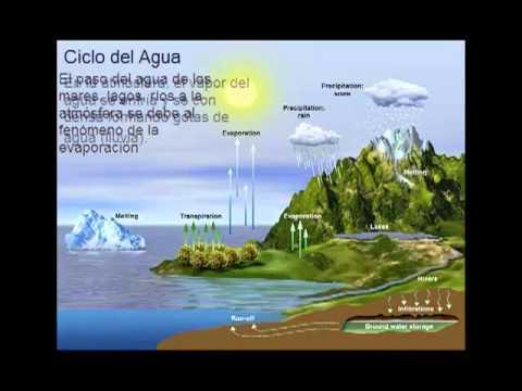 Conservación de los Ecosistemas-Aprendizaje mediado por la tecnología