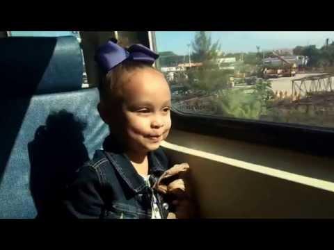 Tri-Rail to Miami - Adventure's of Riley Madison