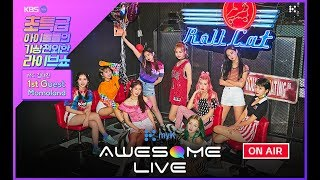 Live My K Awesome Live 모모랜드 Momoland