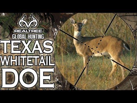 deer hunting defination essays