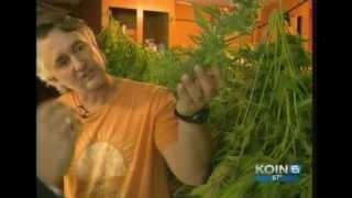 Washington: Social Cannabis Shops Unite to Lower Prices - KGW8