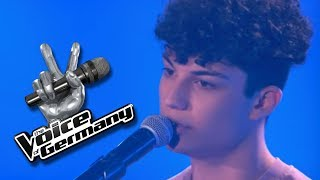 Simon and Garfunkel - Bridge Over Troubled Water | Melvin Vardouniotis | The Voice of Germany 201