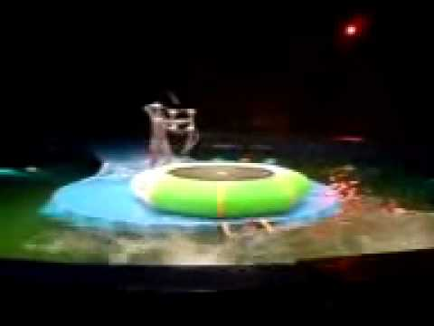 Акробаты на водном батуте !!! цирк юмор спорт от Jumper-Shop.ru