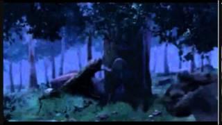 Alpha and Omega, Rain Dance