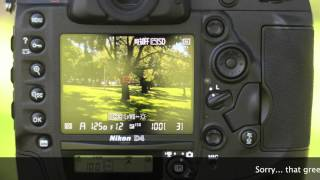 XQD + Nikon D4 full speed test