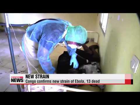 New strain of Ebola turns up in Congo, 13 dead   서아프리카 경제, 에볼라로 중장기 타격 우려
