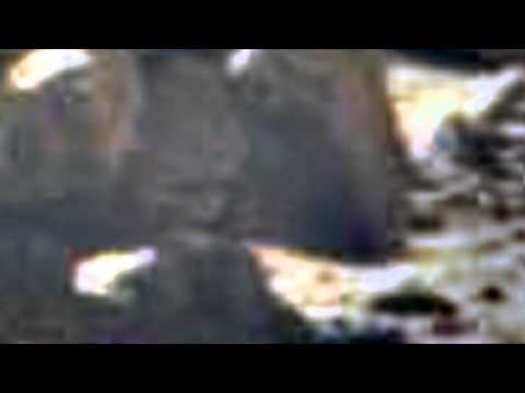 Aliens of MARS on NASA image anomalies anomaly UFO 2013 mars fossil