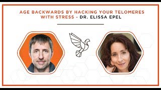 Age Backwards by Hacking Your Telomeres with Stress - Dr. Elissa Epel