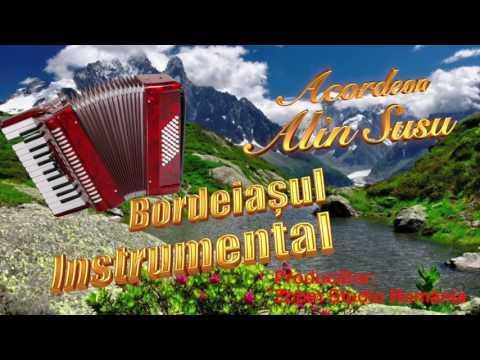 Bordeiașul Instrumental 2017, Alin Susu la Acordeon