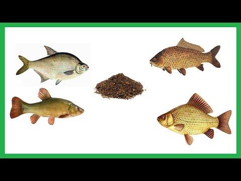 прикормки к рыбалки получи и распишись черном море