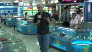 China Cellphone Store Social Media Brand Reporter Billy Carmen Video