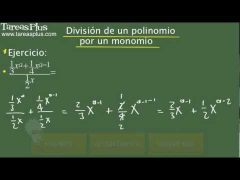 divisi-n-de-un-polinomio-por-un-monomio-problema-15-de-15-.html