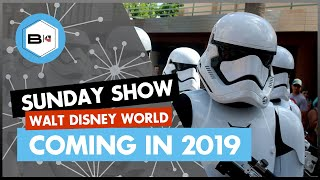 What's Coming to Walt Disney World in 2019