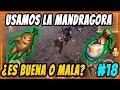 Conseguir Mandragora y la usamos | GRIM SOUL SURVIVAL MP3