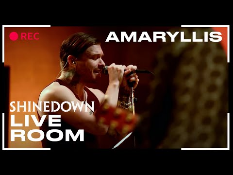 Shinedown - Amaryllis (Live @ The Live Room)