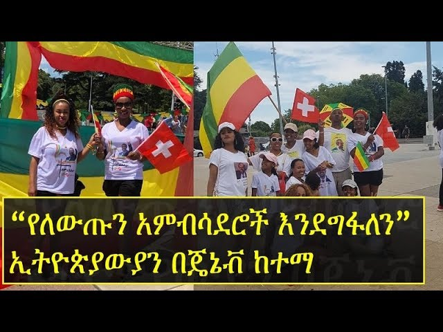 Ethiopians in Geneva in support of PM Abiy Ahmed