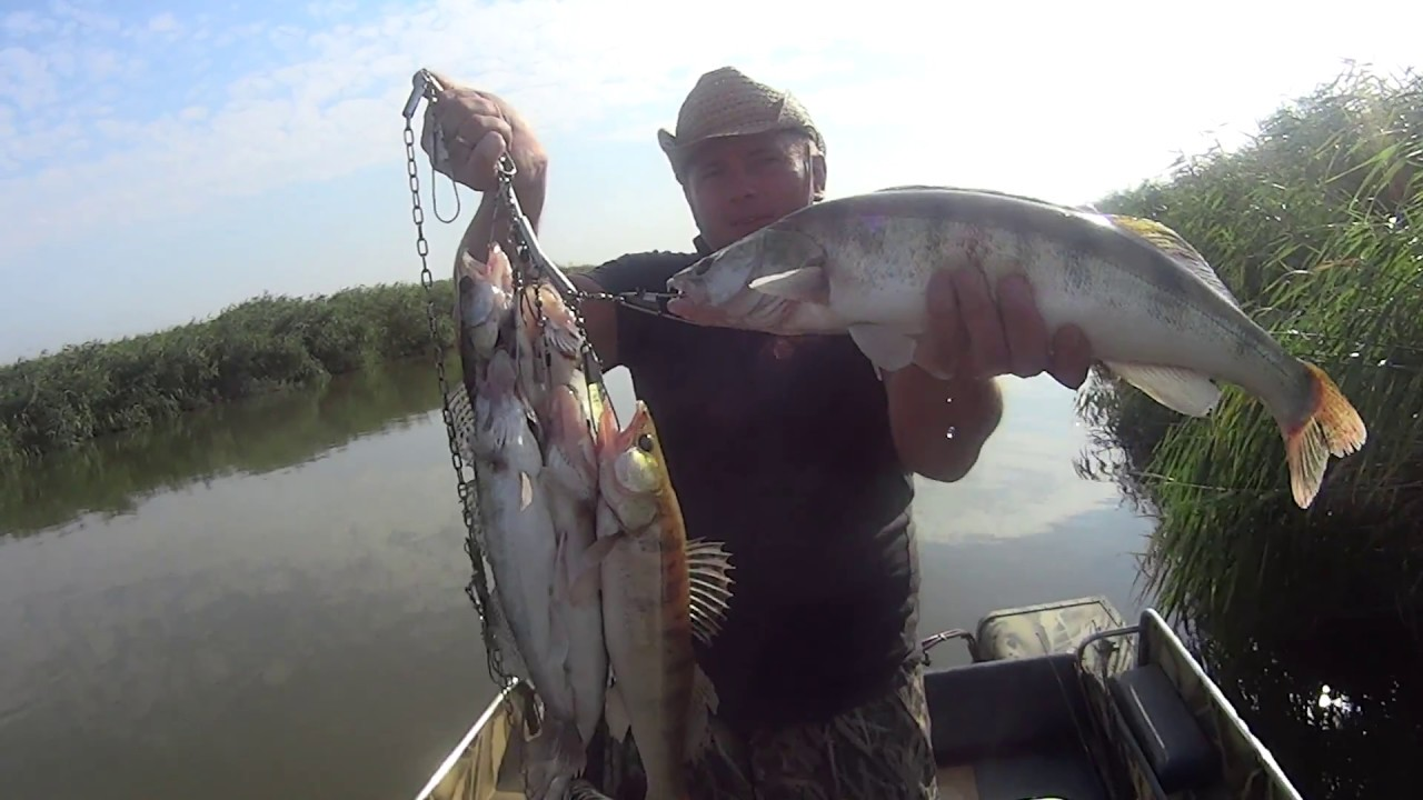 Темрюк рыбалка для