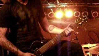 Watch Gwen Stacy If We Live Right We Cant Die Wrong video