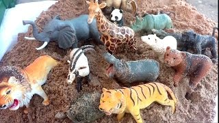Zoo Animal Toy Surprise Hidden In Sand/Dump Truck /Safari Ltd Schleich Wild Animal Toys