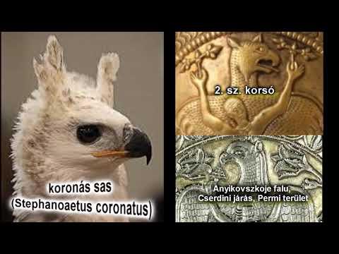 Milyen madár a Turul?