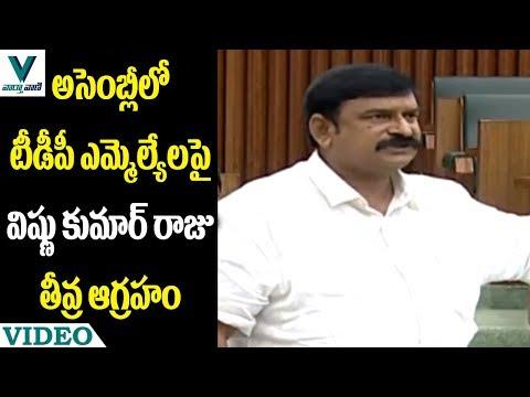 TDP MLAs Interrupts MLA Vishnu Kumar Raju Speech in AP Assembly - Vaartha Vaani