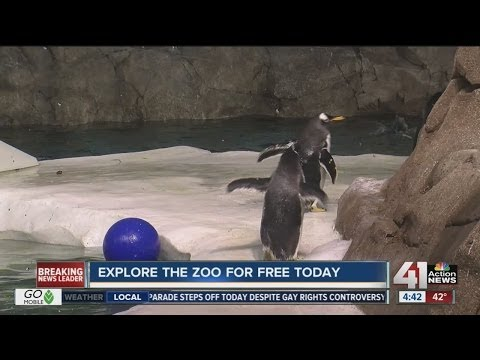 Free Day at the Zoo for Jackson Co. & Clay Co. Residents