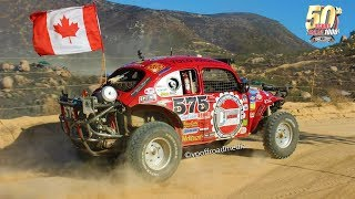 Baja Bugs. Racing for victory at the Baja 1000.