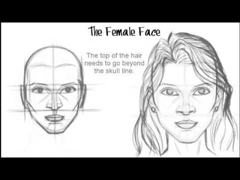 Видео как нарисовать женское лицо
