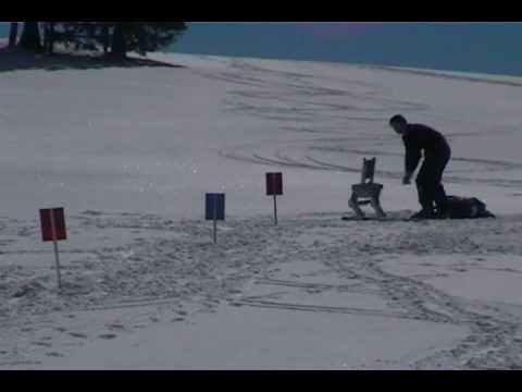 Skiing Robot Takes a Fall