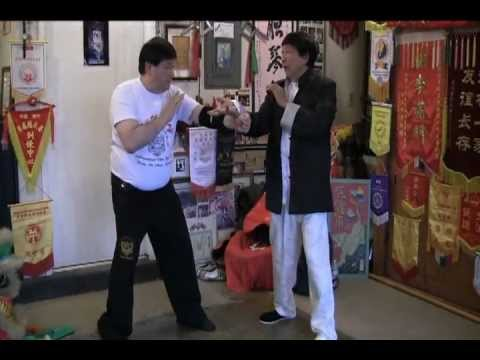 |Hung Gar| Real Southern Style Kung Fu Applications from Chiu Chi Ling master of  Hung Gar Image 1