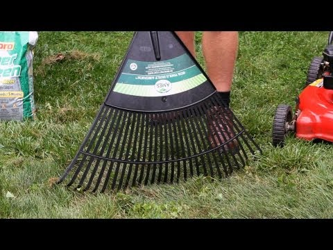 How to Remove Leaves Properly | Lawn & Garden Care