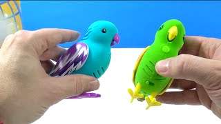 Little Live Pets Tweet Talking Bird Review #4 Silly Billie and #5 Cool Cookie Single Pack Playset