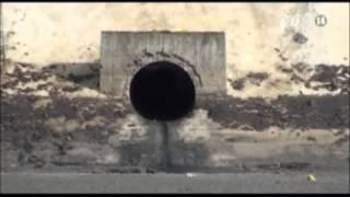VTC14_Tây Ninh: Phát hiện 3 người chết trong bể xử lý nước thải nhà máy mủ cao su