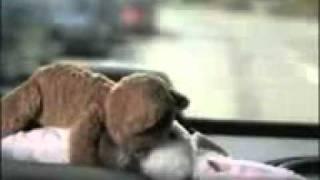 Horny teddy bear fucks Easter bunny   Redtube Free Porn Videos, Movies  Clips.3gp