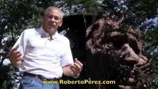 Manejando lo Negativo en Multinivel por Roberto Perez