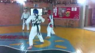 Karatê Shotokan vs Taekwondo