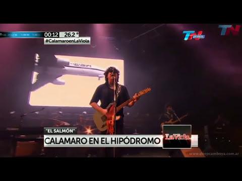 El Salmon - Hipódromo Palermo 2013 - Andres Calamaro