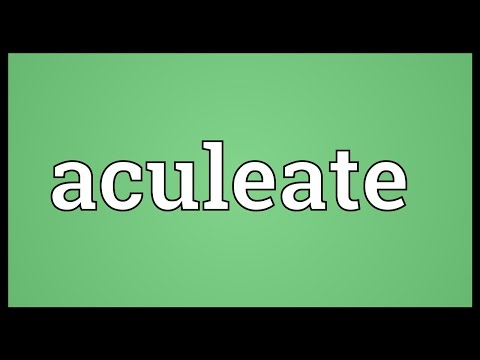 Header of aculeate