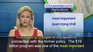 Anh ngữ đặc biệt - Thailand Rice