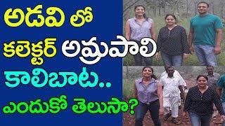 అడవిలో కలెక్టర్ ఆమ్రపాలి కాలిబాట! | Warangal Collector Amrapali Visit Forest | Top Telugu Media