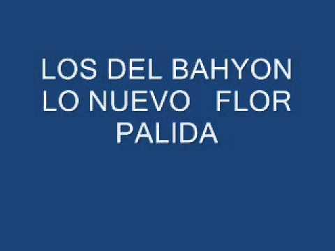 LOS DEL BAHYON FLOR PALIDA