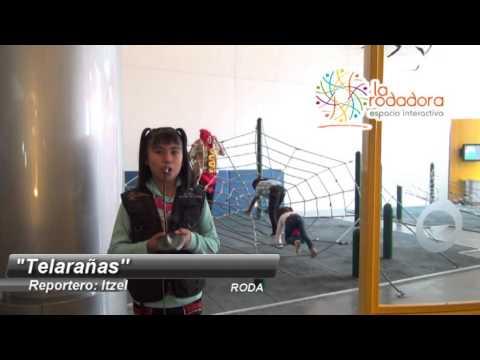Rodanoticias Itzel Telaranas